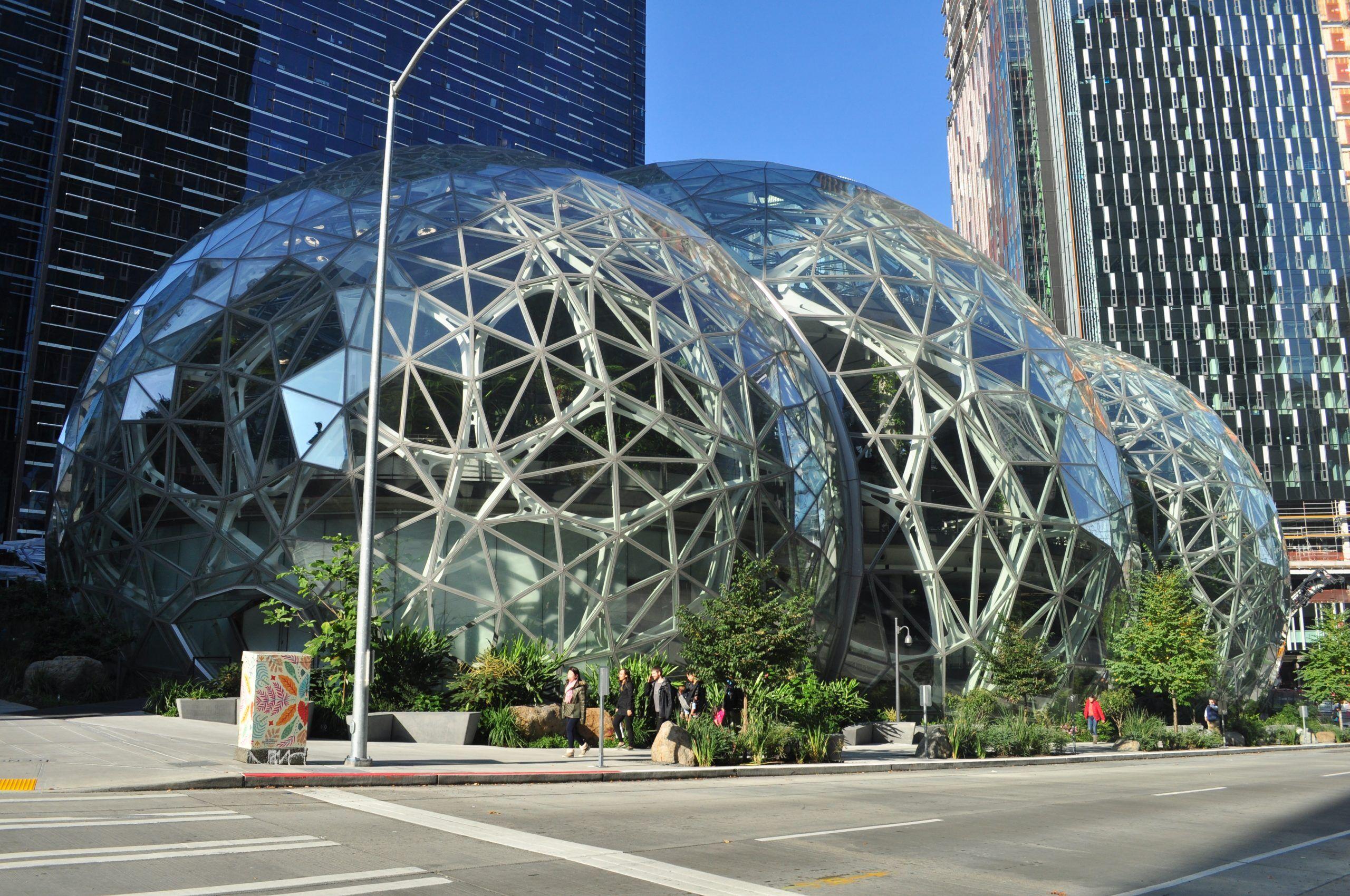 Photo des biosphères Amazon