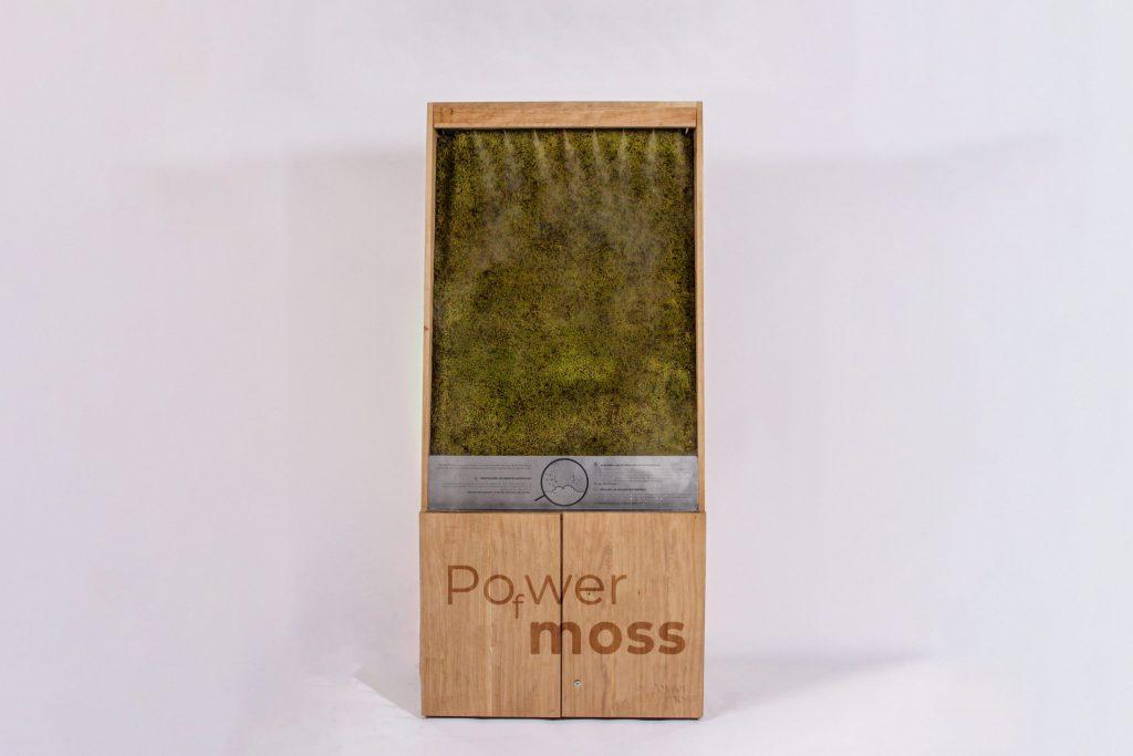 Mur végétal powerofmoss