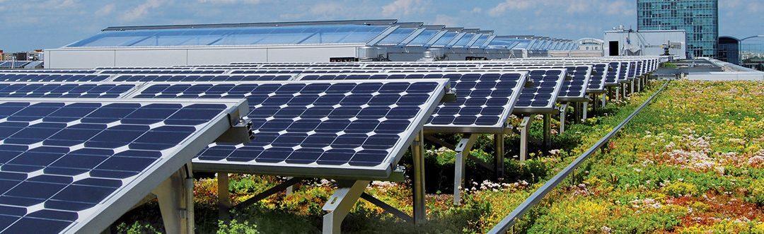 Loi Énergie et Climat : végétalisation obligatoire ?